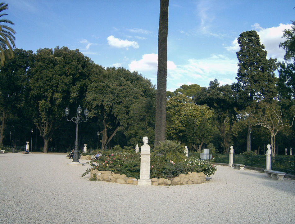 roma Alberi Beauty In Nature Bäume Day Growth Italia Italie Italien Italy Italy❤️ Italy🇮🇹 Nature No People Outdoors Parc Parco Park Pincio Plant Roma Rome Sky Tranquility Tree Trees