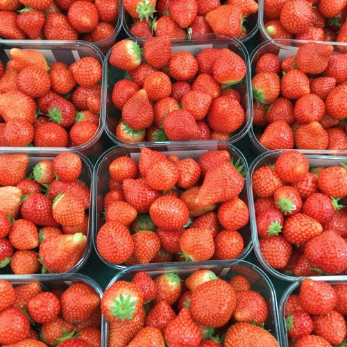 Color Palette Strawberry ColorPalette Food Red Fruits ♡ Colorpallette Nature Photography
