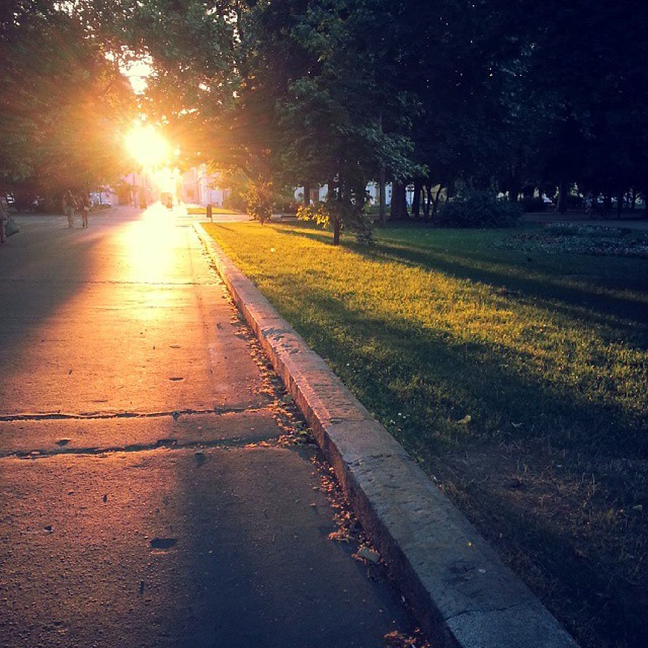 sunset, road, tree, sun, street, sunlight, nature, outdoors, no people, beauty in nature, day, sky