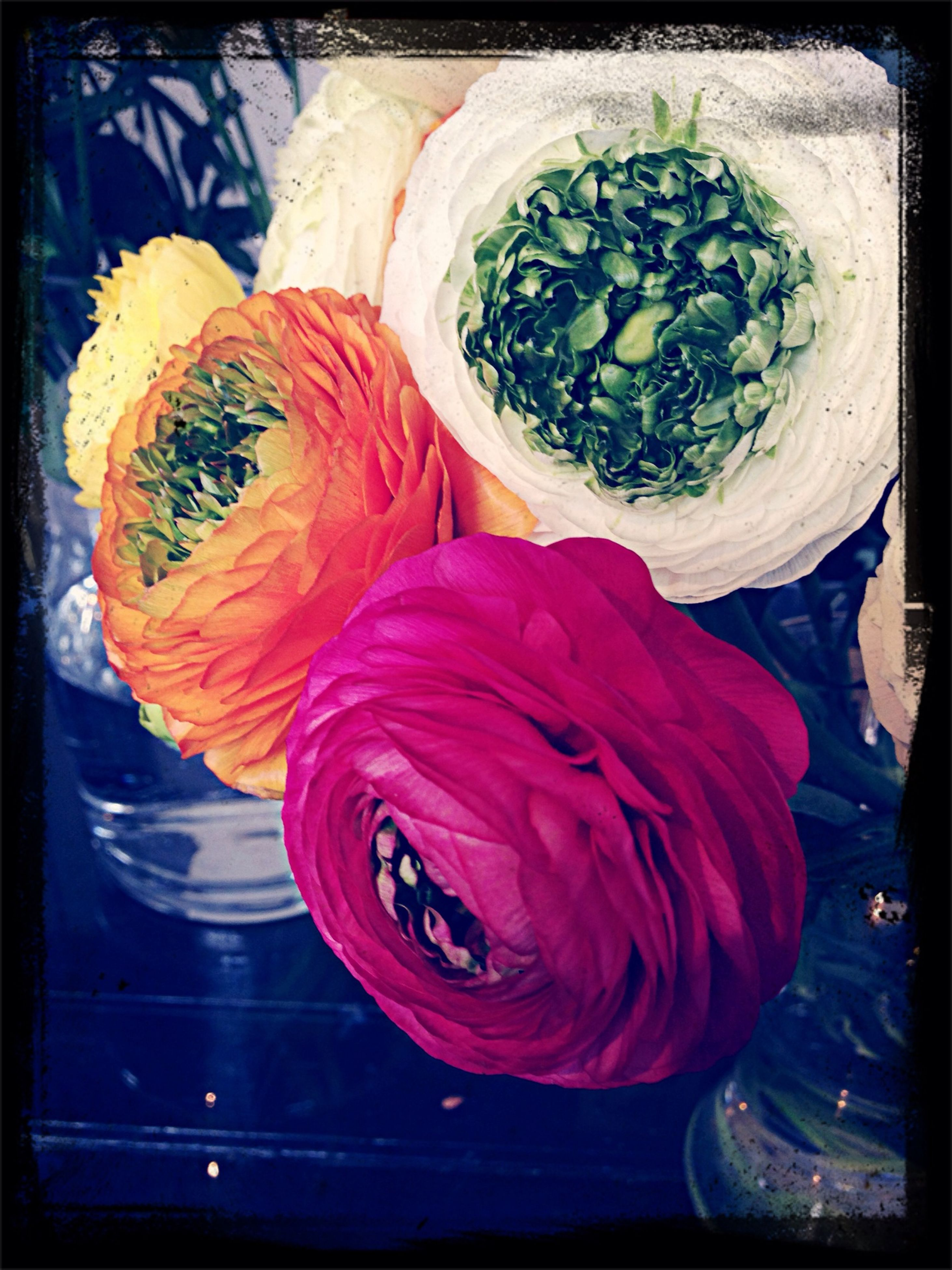 transfer print, indoors, freshness, auto post production filter, still life, high angle view, food and drink, table, close-up, multi colored, food, flower, red, no people, healthy eating, directly above, decoration, variation, vegetable, bowl