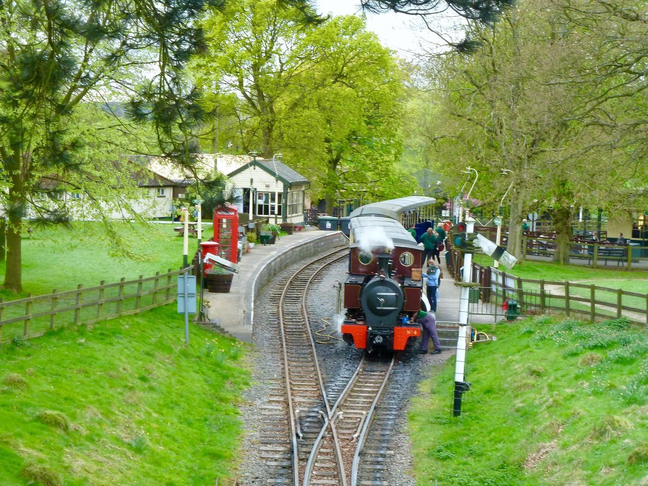 Steam Train Whipsnade Zoo Tree Grass Transportation Green Color Outdoors Day Nature Tranquil Scene