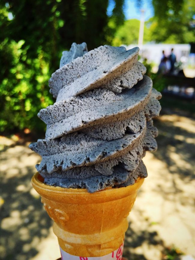 Black sesame ice cream Osakacastle OSAKA Food And Drink Focus On Foreground Food Frozen Food Dessert Japan Sesame Ice Cream