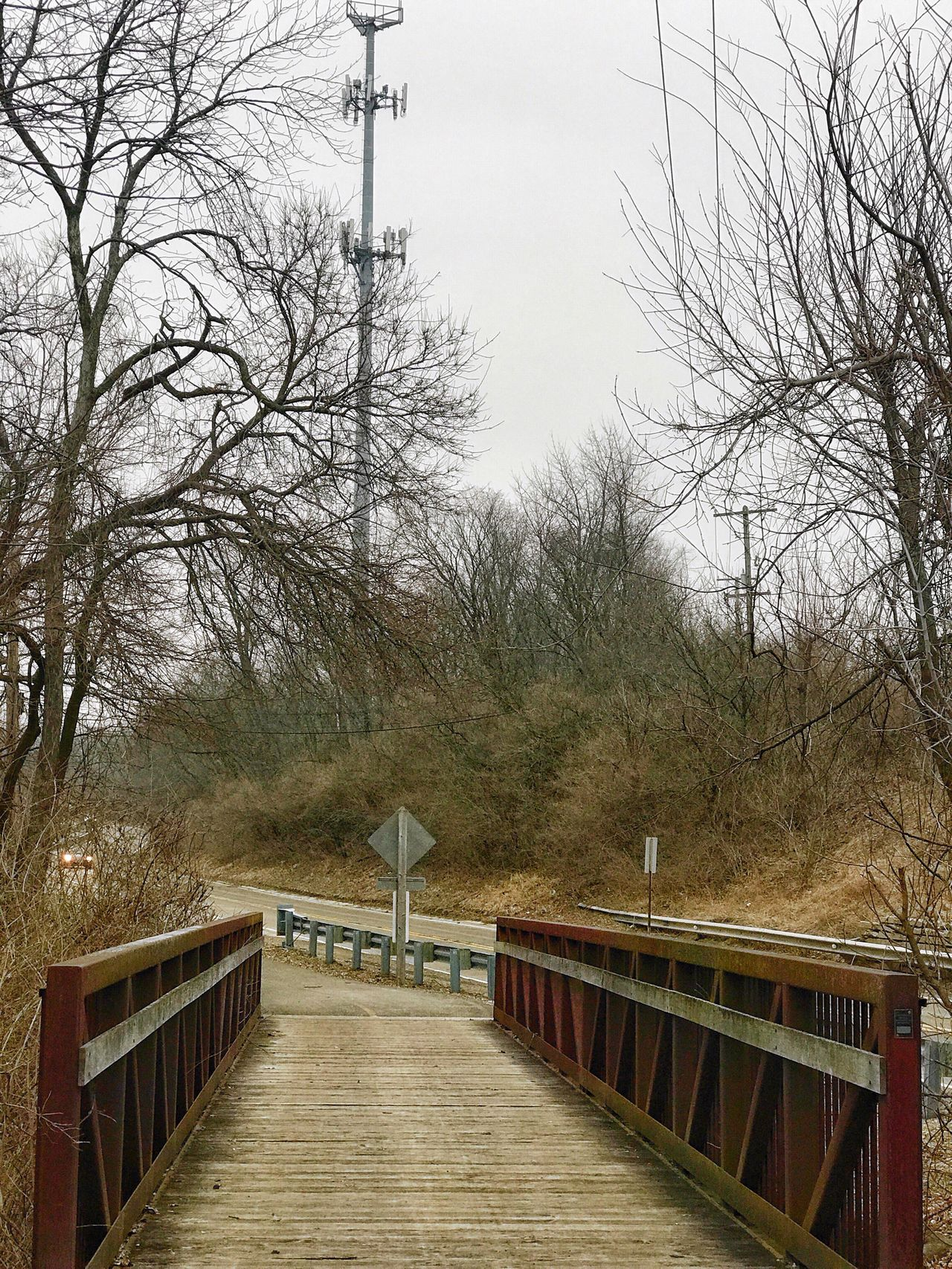 Railing Tree Outdoors Bare Tree No People Tranquility Bridge - Man Made Structure Sky Nature Day Wheelchair Access The Week On Eyem Exceptional Photographs Landscape_Collection Landscape Landscape_photography Oswego, IL Montgomery, IL The Architect