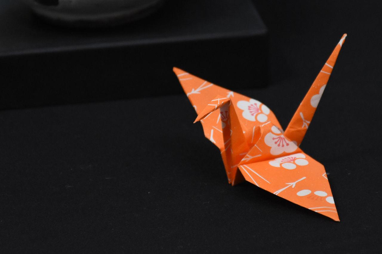 Real Jardín Botánico de Madrid. Exposición Black Background Close-up No People Orange Color Origami Origami Birds Origamiart Pajaro Studio Shot