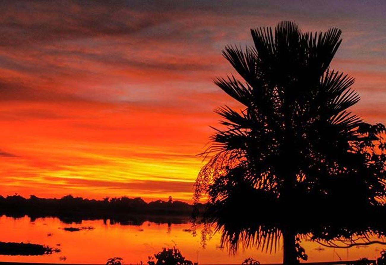 Fuerteolimpo Conozcalugarespy Chaco Cloud Chacopy Pantanal Paraguayenfotos Paraguay_brasil Great_captures_nature Great Great_captures_paraguay Great_captures_brasil Nature Naturelovers Instaparaguay Paraguay Karanday Sunrise World_sunrise Instachaco