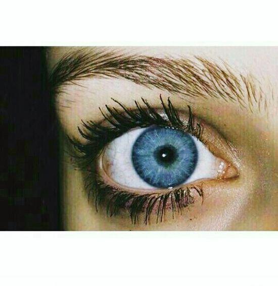 Human Eye Close-up Adult People Portrait