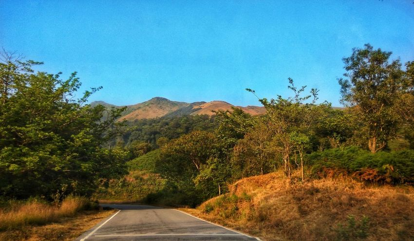 Beautiful view on the way to kudremukh Chickmagalur EyeEmNewHere Travel Travel Destinations Karnataka Tourism Beautiful Kudremukh Mountain View Forest Photography Blue Sky Mountain Road Mountains Journey The Way Forward Tree Road Nature Growth Outdoors No People Plant Sky Clear Sky Beauty In Nature Scenics Day