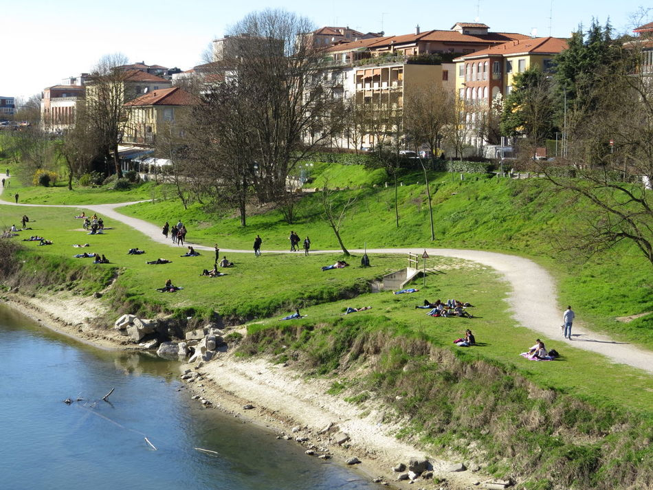 Beauty In Nature Enjoying The Sun Grass Large Group Of People Leisure Time Nature Nature And City Outdoors Pedestrian Path River Banks Urban Life Water
