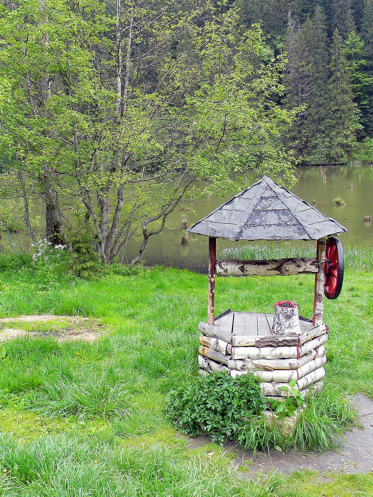 Forest Green Green Color Idyllic Lake View Nature On The Lake Trees Water Well  Wheel Well