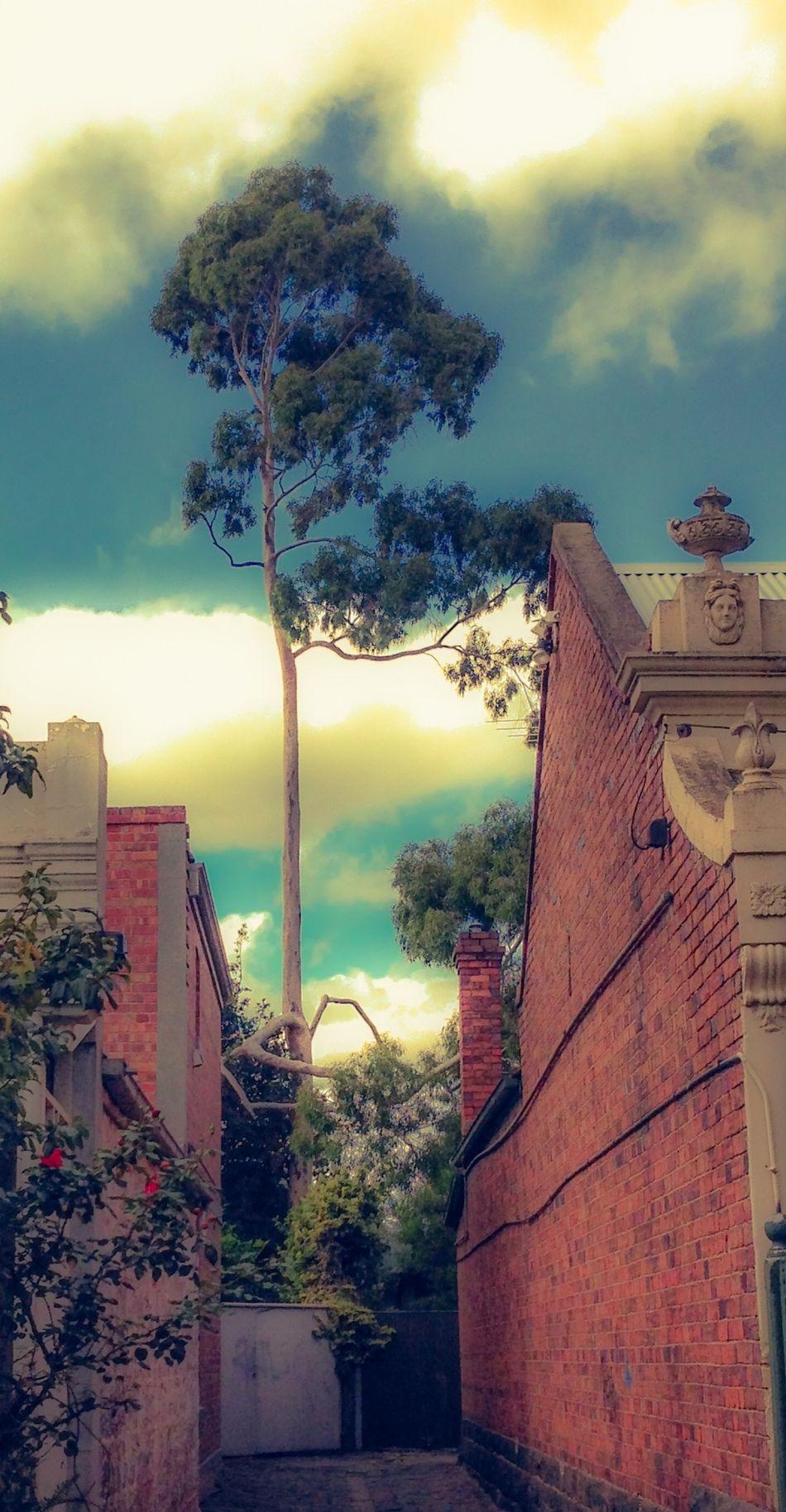 Pantone Colors By GIZMON Aussie colours...