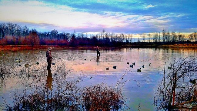 Cold Days Brrrr! Outdoors Ducks And Geese EyeEm Best Shots Hunting Duck Hunting Outdoor Photography Duck Decoy Pond