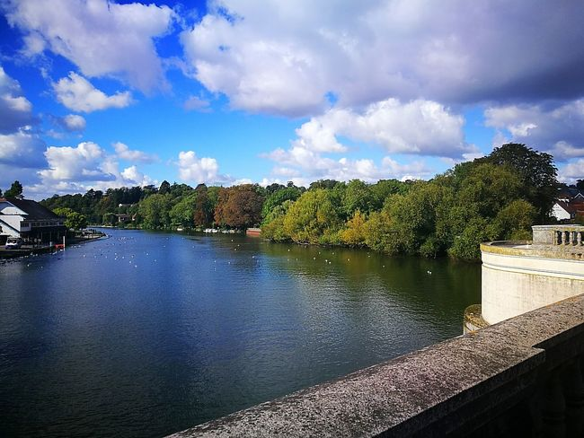 Riverthames River Bridge Autumniscoming Fall Colors Blue Sky Clouds Water Tranquility Nature Beauty In Nature Tranquil Scene Swans Green Leaves Day Outdoors No People Caversham Caversham Bridge Calm Photooftheday Scenics Mobilephotography England 🌹 TakenwithhuwaeiP9
