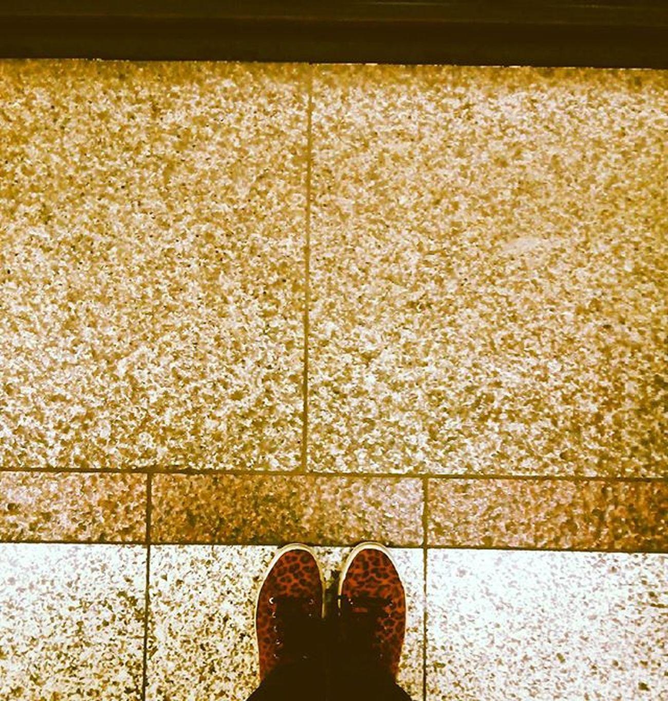 Animal print.•°•{January 29th} αθηνούλα μέγαρομουσικής Metrostation Shoes Floor Animalprint Fridays Fridaymood Rehearsing Fridaynights  MusicISeverything Loveisintheair Loveiseverywhere VSCO Vscocam Vscolove Vscomood Vscofloor Vscoaninalprint Vscoshoes Instagreece Instaathens Instagirl Instame Instafridays instamusic instalifo instadaily