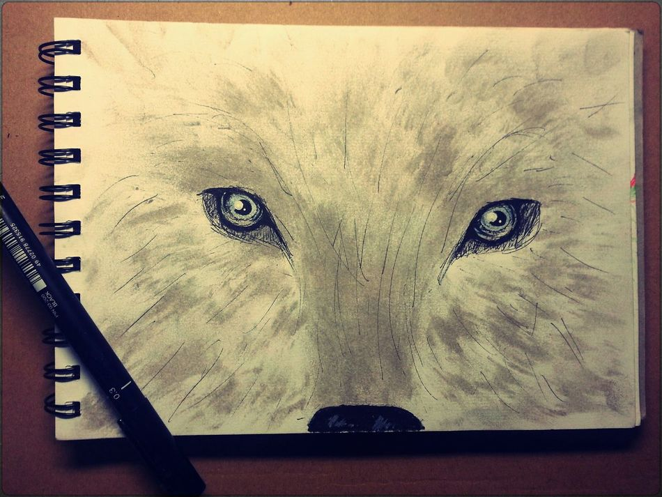 Beautiful stock photos of drawings, Animal Representation, Art, Art And Craft, Book