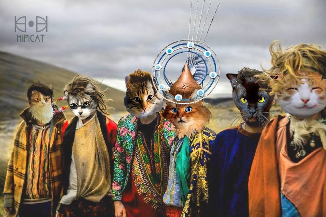 Cool Cats  Humans With Cat Heads Photo Montage