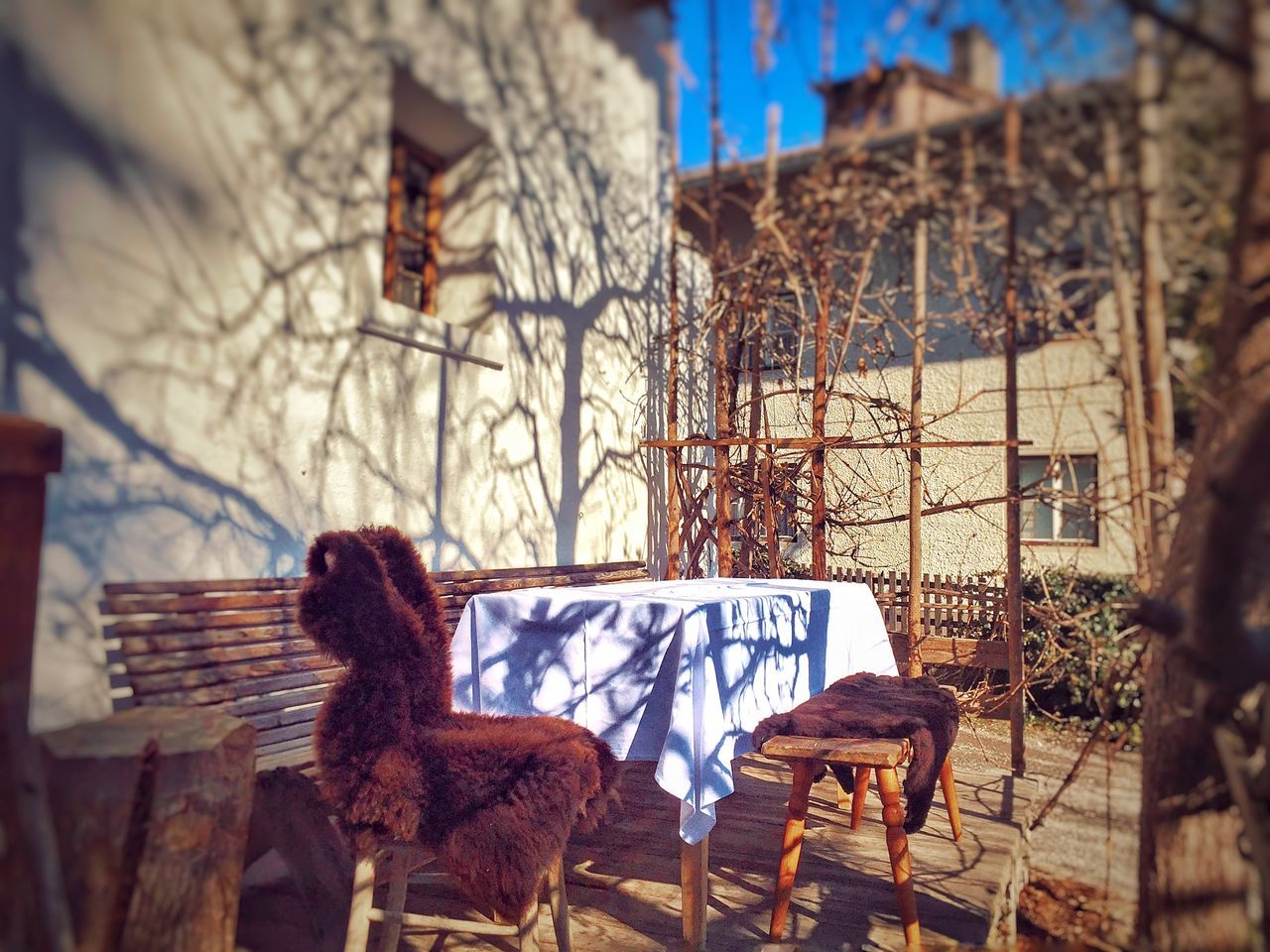 Furs On Seat By Table In Yard