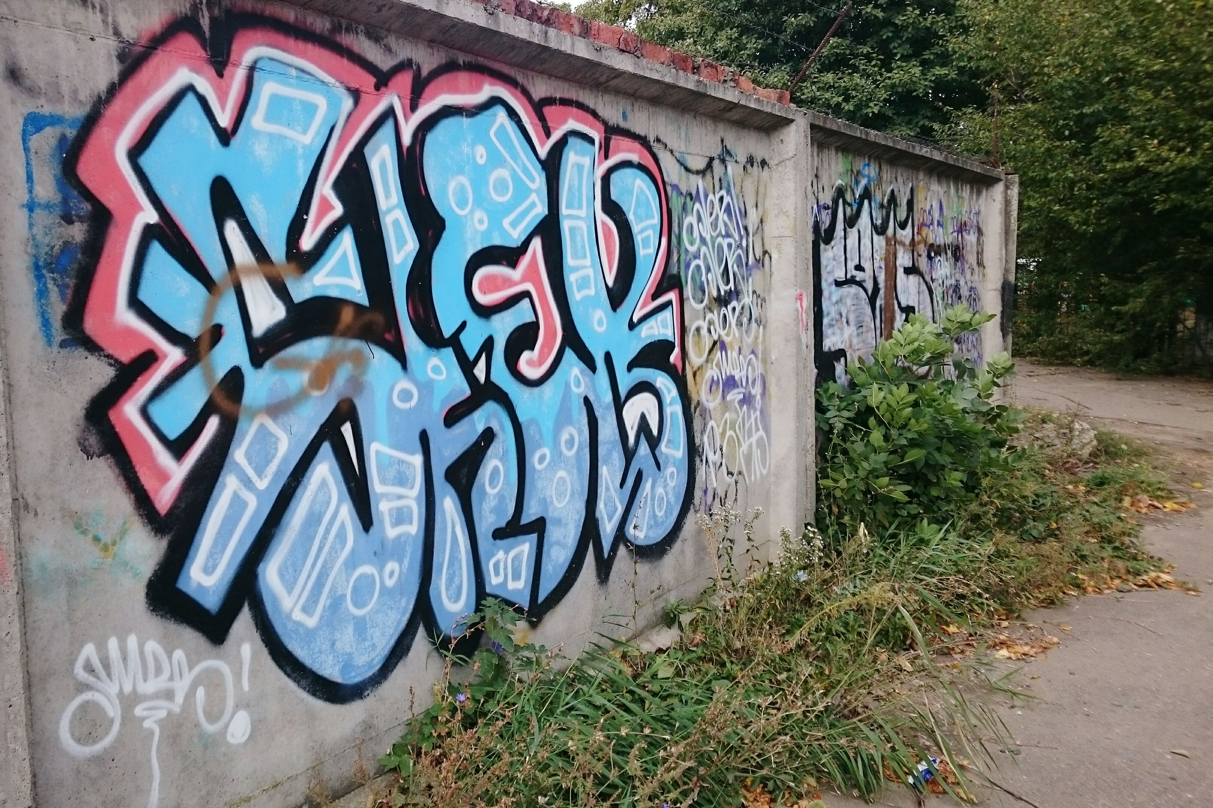 graffiti, art, creativity, text, art and craft, western script, wall - building feature, street art, communication, wall, built structure, human representation, multi colored, animal representation, no people, day, outdoors, architecture, street, building exterior