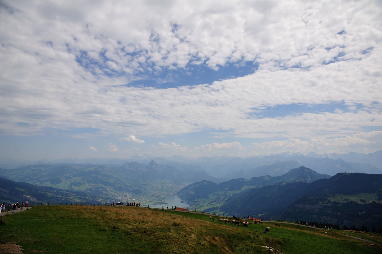 Hill Cloud - Sky Mountain Range Landscape Blue Environmental Conservation Sky Nature Beauty Beauty In Nature Scenics Outdoors Tree Rigi The 👑 Queen Of Mountains Rigi Mountain Rigikulm Swiss Mountains Swiss