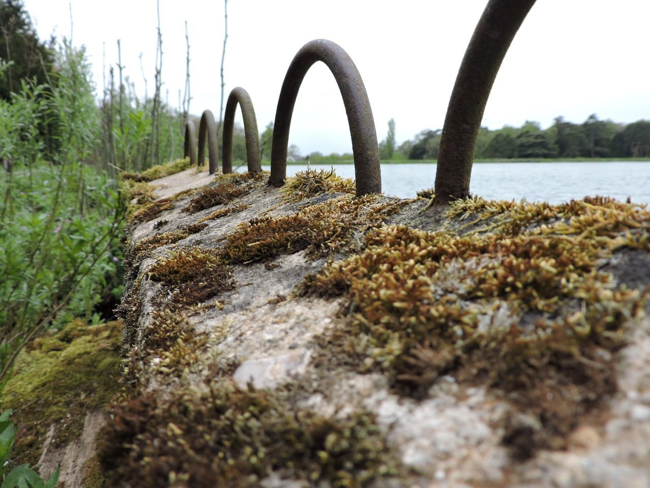 Back To Nature Close-up Day Disrepair DISUSED Metal Hoops Moss No People Non-urban Scene Old Outdoors Resovoir Water