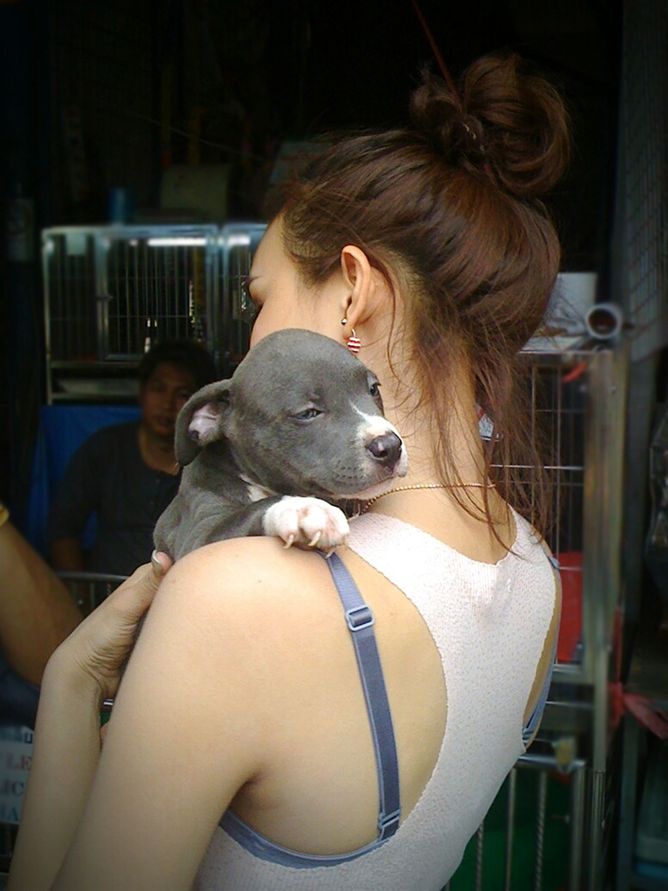 Cute Pets Cute Dog  Thailand Chatuchak Weekend Market Chatuchak Enjoying Life Pet Cutie Asleep Puppy Asleep Sleepy Puppy