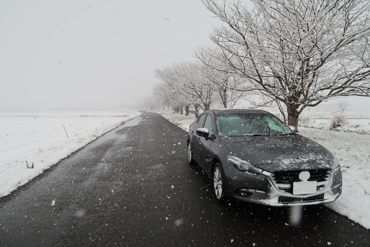 Car Transportation Land Vehicle Mode Of Transport No People Snow Day Cold Temperature Nature Sky Outdoors 冬 冬景色 雪 桜 マツダ アクセラ 22XD Mazda MaZda3