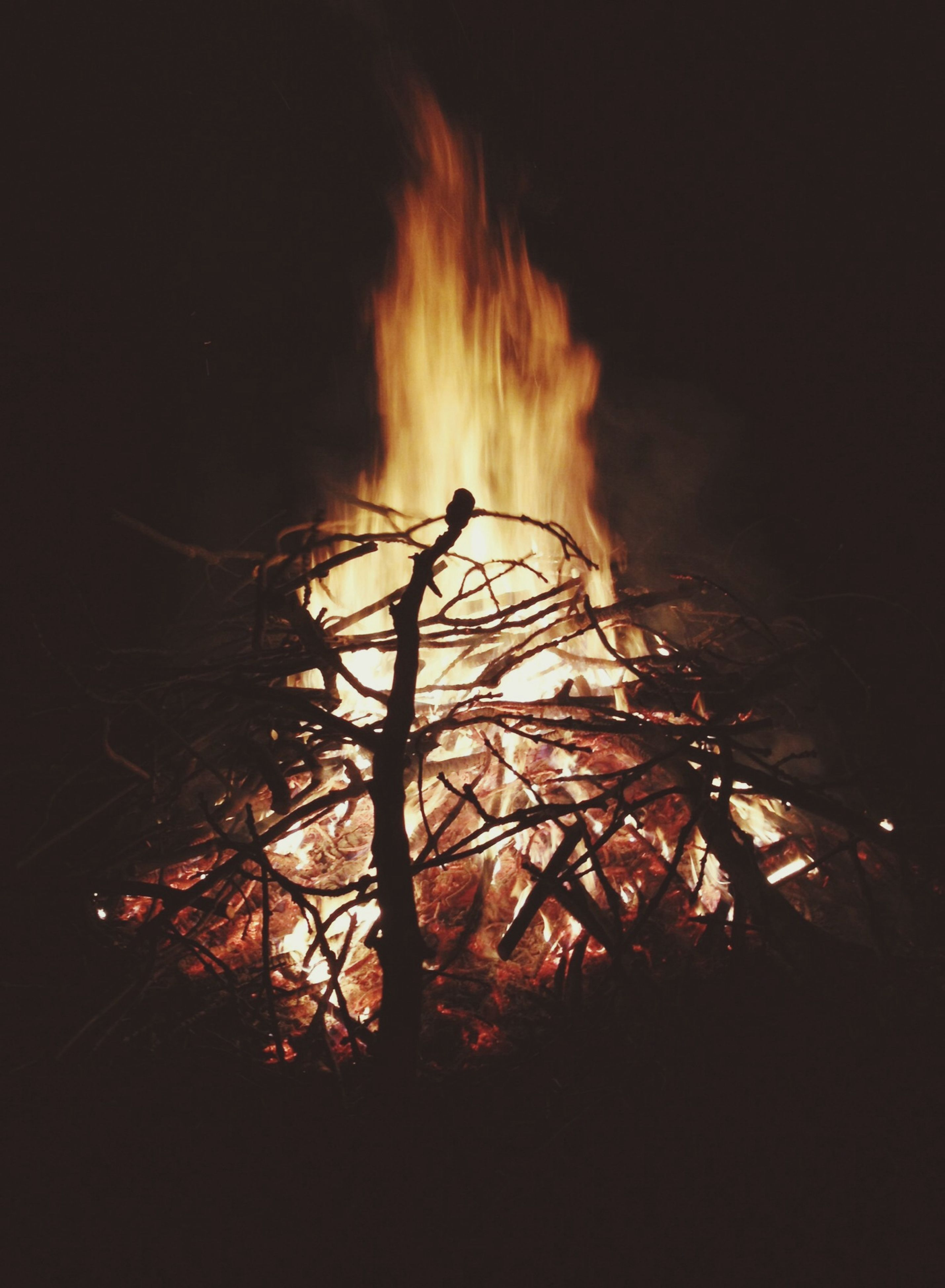night, fire - natural phenomenon, silhouette, glowing, burning, dark, flame, low angle view, illuminated, heat - temperature, orange color, copy space, sky, outdoors, tree, long exposure, motion, nature, light - natural phenomenon, no people