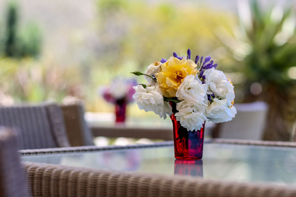 Flowers on table | high res image available Flower Arrangement Flowers On Table Outdoor Tables Petals Picked Flowers Restaurant Tables Summer Flowers Table Flowers Table Setting