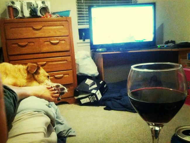 Lazy night. Holding paws with Wrigley. Wine. Catfish on mtv. And my love.