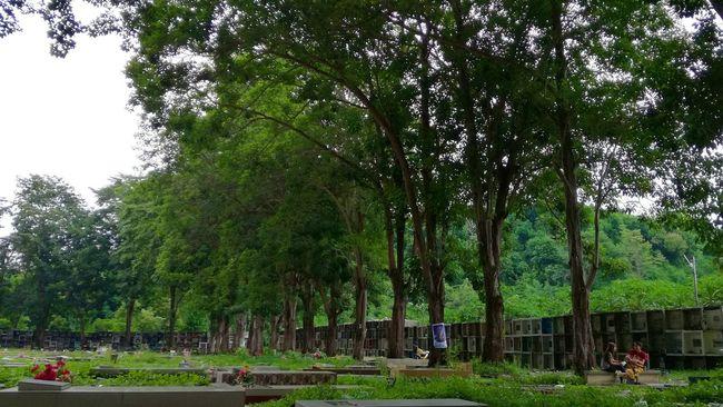 Serene Eyeem Philippines EyeEm Best Shots - Landscape EyeEm Best Shots - Nature EyeEm Travel Photography
