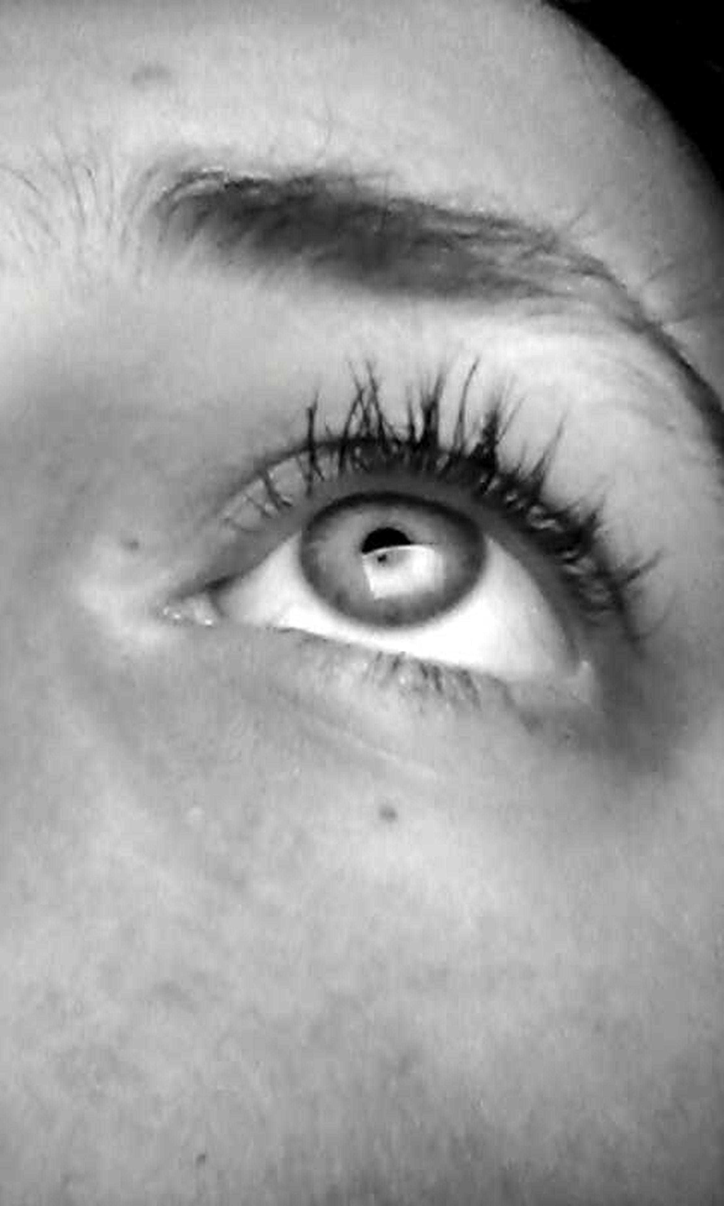 human eye, eyelash, close-up, eyesight, human skin, human face, part of, sensory perception, looking at camera, indoors, lifestyles, portrait, iris - eye, person, studio shot, eyebrow, extreme close-up