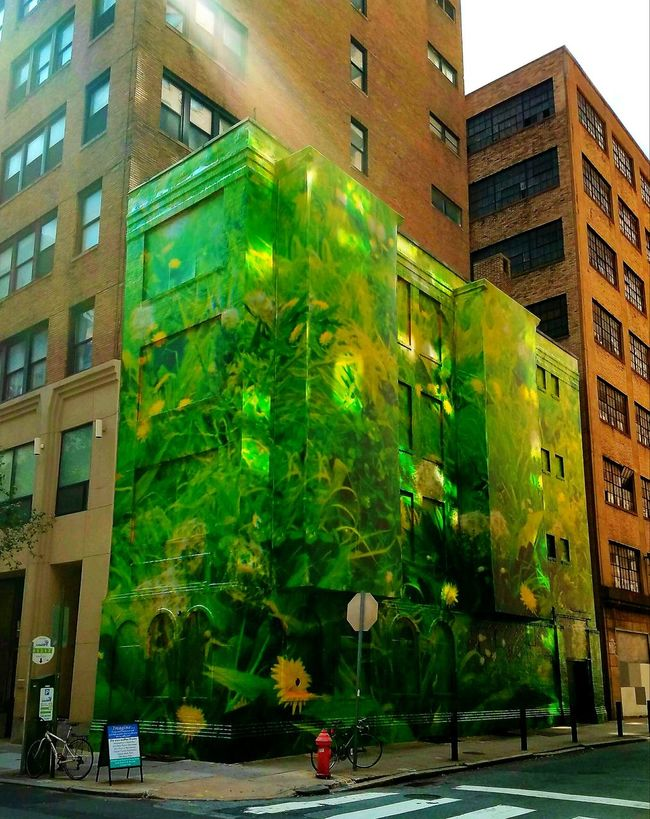 Forest green. Architecture Photo Of The Day Eyemphotography Beautiful Girasole Sunflower Check This Out Art Artoftheday Wall Painting/grafitti Wallpainting Wall Murals Green Streetart