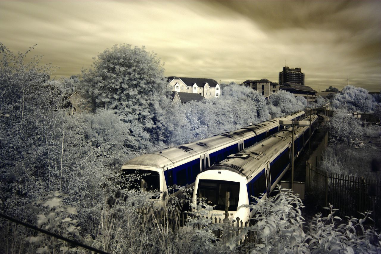 tree, no people, transportation, built structure, nature, outdoors, sky, train - vehicle, day, architecture, beauty in nature