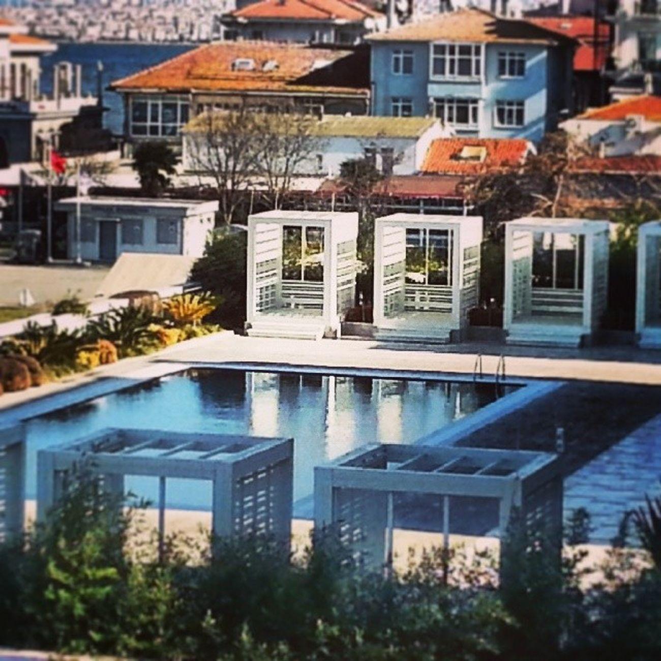 Istanbul Türkiye Picofday Boğaz Winter Büyükada Princeislands Island