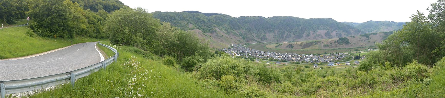 Panorama at Calmont an der Mosel by Sylvia Bauer