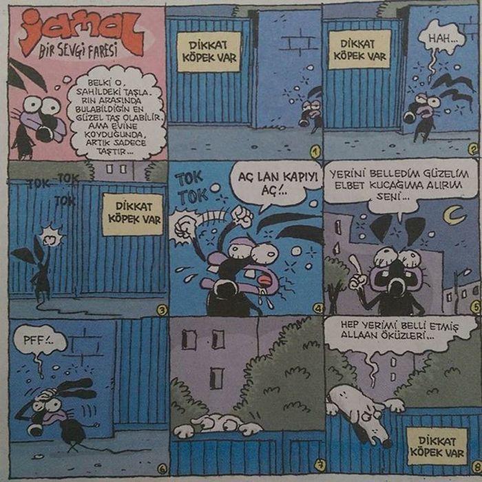 Jamal... Bir sevgi faresi. Komik Karikatur Karikatur Mizah eglence eglenceli komedi penguen girgir uykusuz caps istanbul fun funny