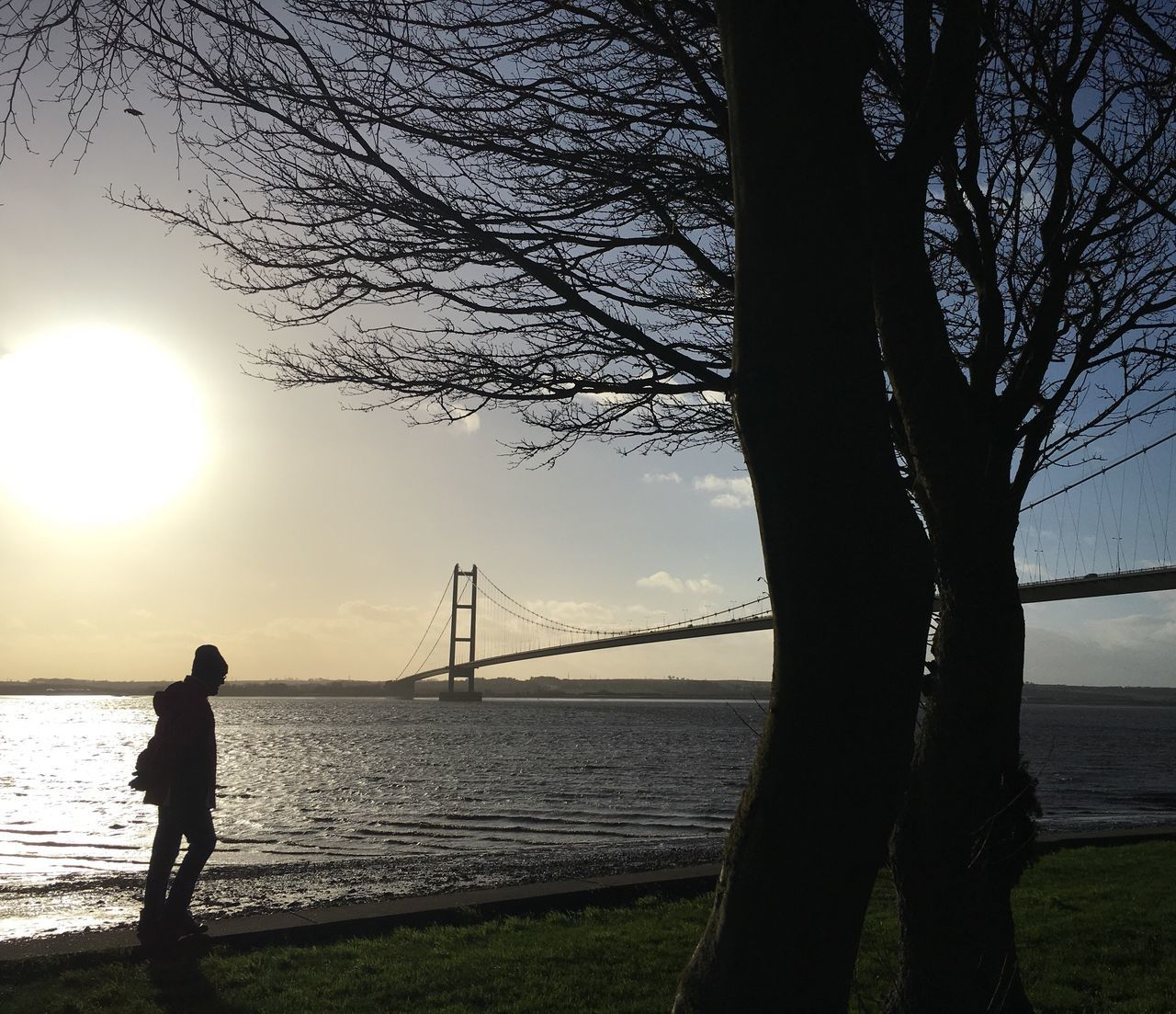 Silhouette Tree Real People Sunset Water Nature Beauty In Nature Tranquility Winter Blue Sky Winter Tree Hull 2017 River Humber Humber Bridge East Yorkshire Hiker Walker