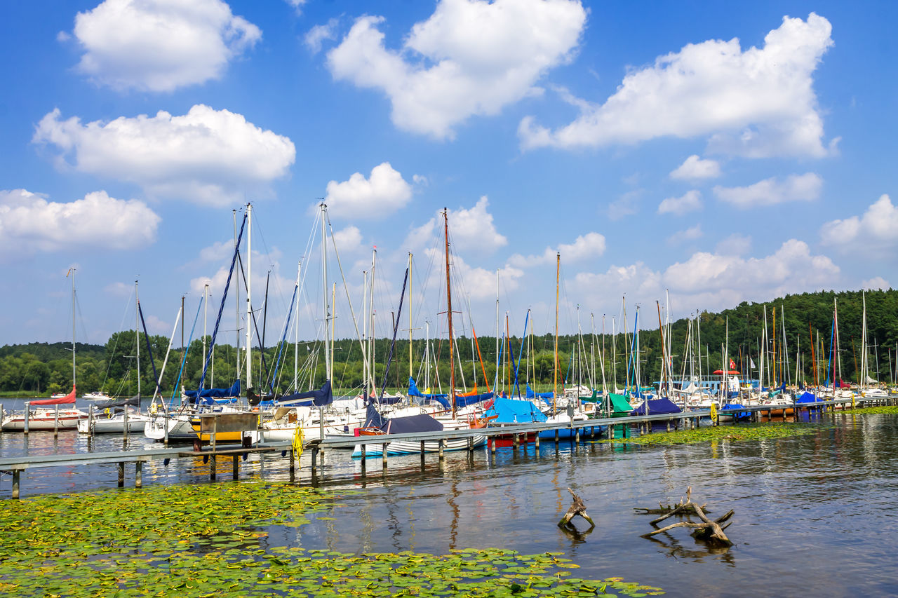 cloud - sky, water, sky, nature, day, transportation, nautical vessel, moored, outdoors, mode of transport, lake, tree, scenics, no people, animal themes, beauty in nature, bird