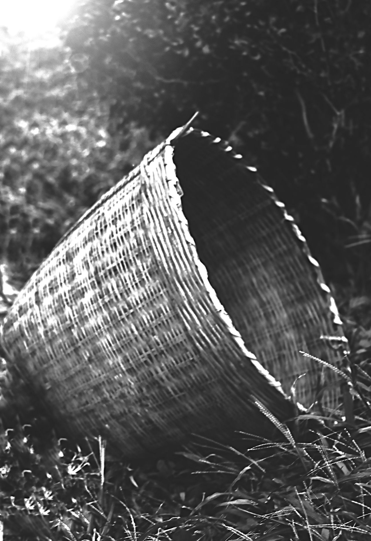 Abandoned ASIA Basket Black And White Blackandwhite Blackandwhite Photography China Chinese Day Grass Handmade In The Woods Light And Shadow No People Simplicity Woven Bamboo Woven Baskets