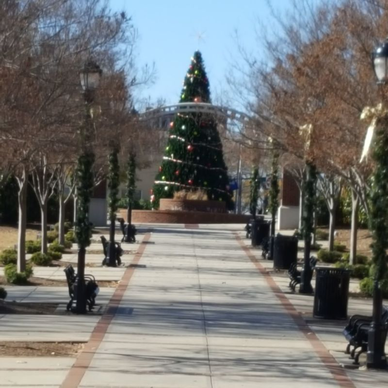 City sidewalks Tree Outdoors No People Architecture Building Exterior Christmas Bare Tree Sky Day Built Structure Celebration Christmas Tree Snow Illuminated Nature City Sidewalks Greer, SC Love My Life  Holiday - Event Christmastime Loving Life  Decorated Christmas Decoration Most Wonderful Time Of The Year