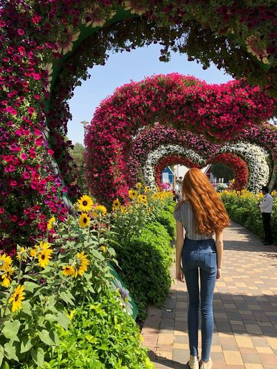 Colourful Miracle Garden Dubai Heart Shape Romantic Redhead Adult One Woman Only Women Red Outdoors Flower Nature Day