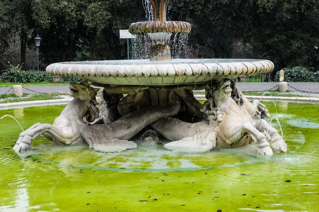 Fontana dei cavalli marini a villa borghese a Roma. Architecture Fountain Animal Themes Cavalli Marini Fontana Old Outdoors Sea Horse Water