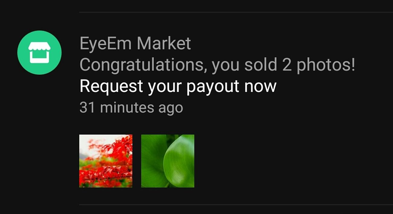 I am so thankful to EyeEm market for the great works ,so appreciate my great awesome friends!!! 😊😄🙋🙋🙋🎉🎉🎉✨✨✨🙏🙏🙏So Happy And Exciting II LIKE👍EyeEm😃👍 Thank You Eyeem Thank You My Friends 😊