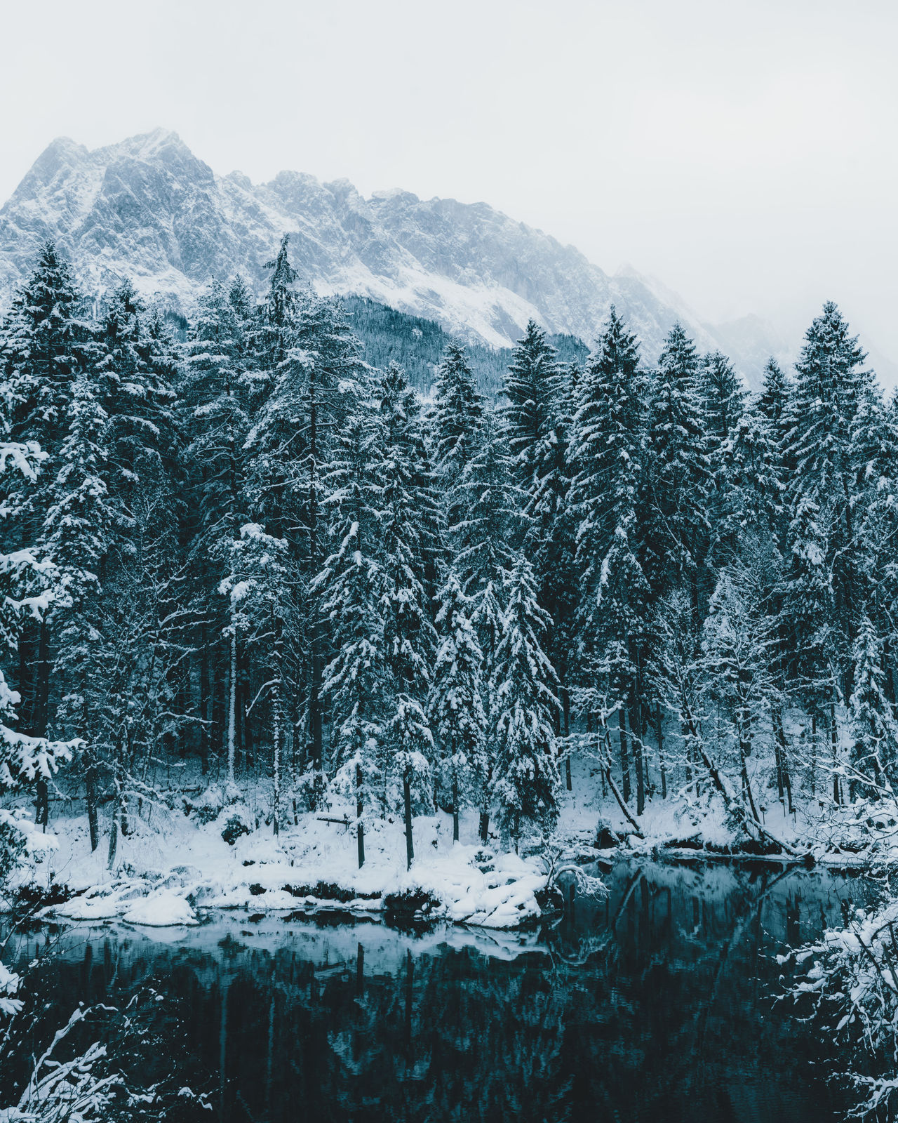 forest and lake in front of mountains Beauty In Nature Close-up Cold Temperature Day EyeEm Best Shots Landscape_Collection Mountain Nature No People Outdoors Snow Snowing TheWeekOnEyeEM Tree Winter