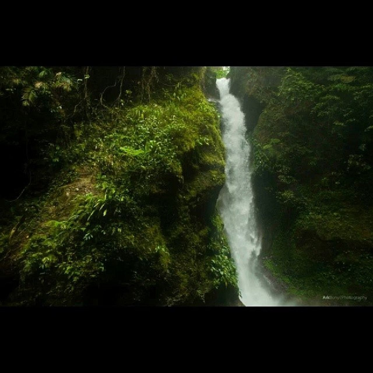 waterfall, motion, forest, no people, nature, scenics, beauty in nature, outdoors, freshness, day