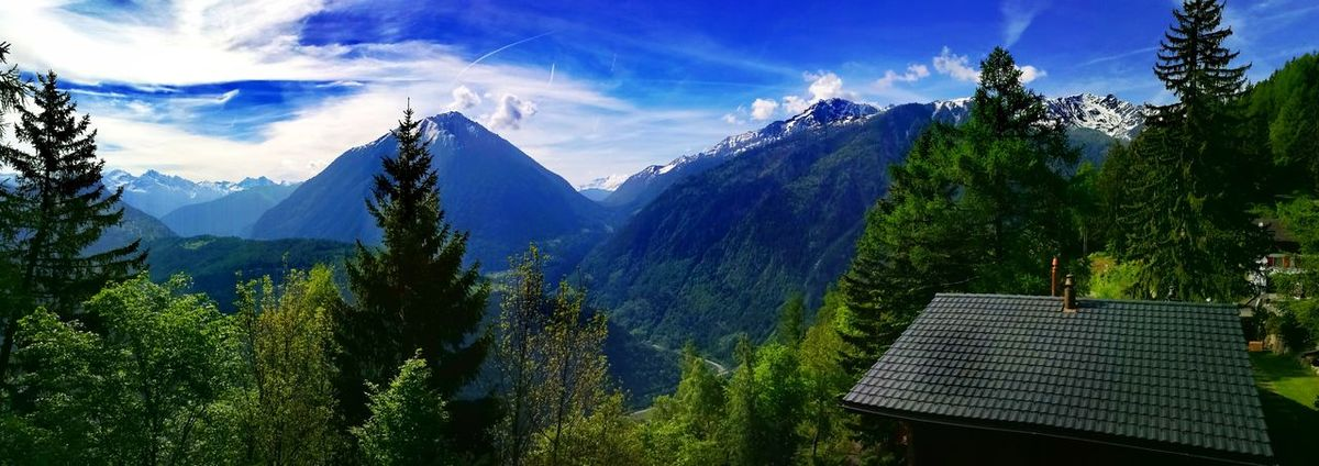 Tree Mountain No People Pinaceae Nature Mountain Range Cloud - Sky Pine Tree Scenics Outdoors Sky Day Beauty In Nature Growth Tierra ❤ Aire Agua Fuego House Trees Green Blue Sky Blue Martigny