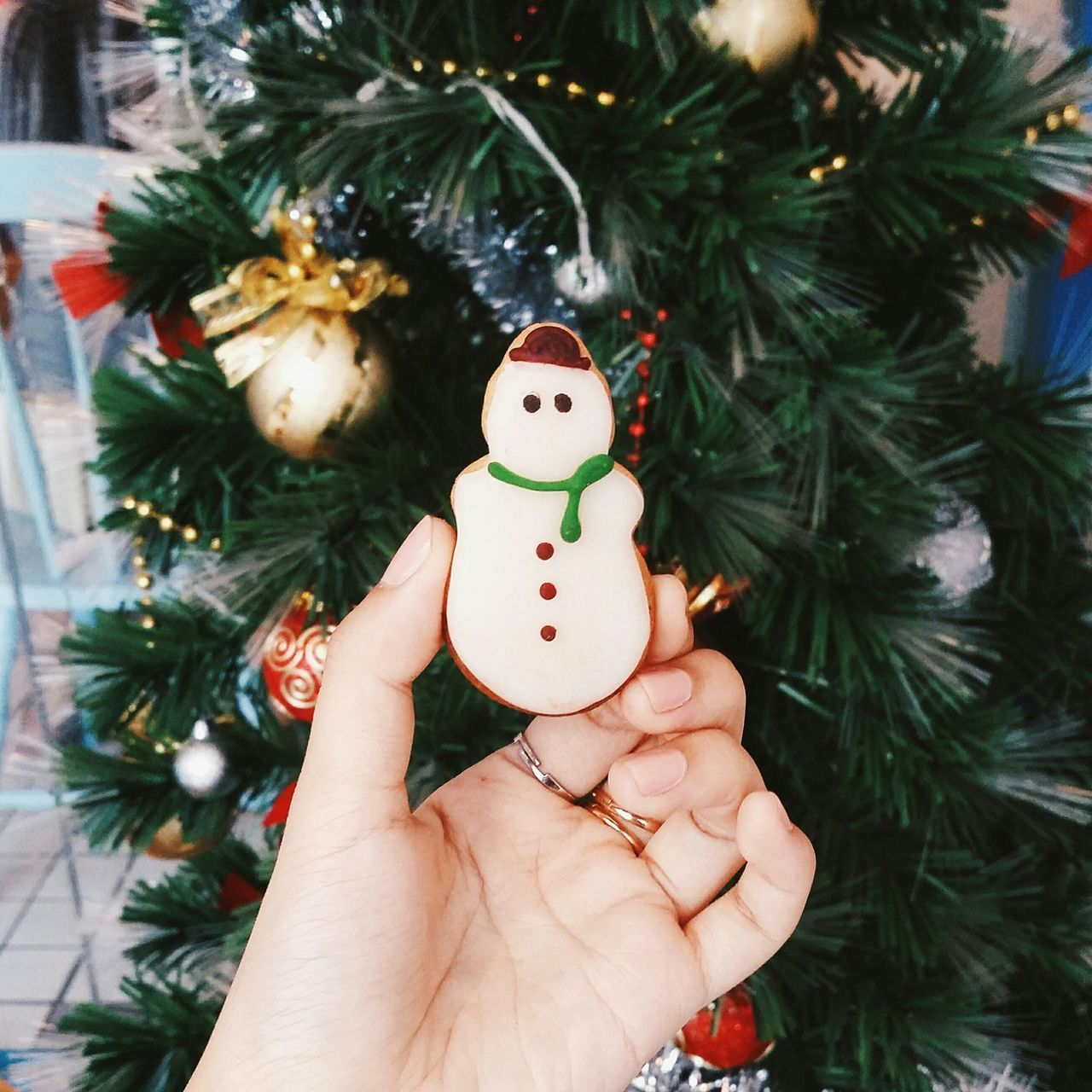 Beautiful stock photos of schneemann, christmas tree, christmas, celebration, christmas decoration