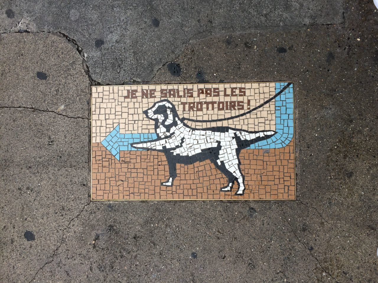 Art Chien Creativity Day Dog Geneve Mosaic Mosaic Art Mosaic Tiles No People Outdoors Street Art Trottoir Urban Urban Lifestyle