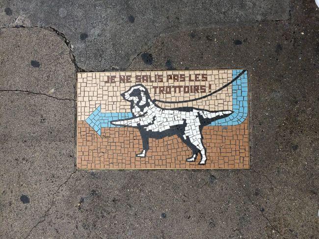 Art Chien Creativity Day Dog Geneve Mosaic Mosaic Art Mosaic Tiles No People Outdoors Street Art Trottoir Urban Urban Lifestyle