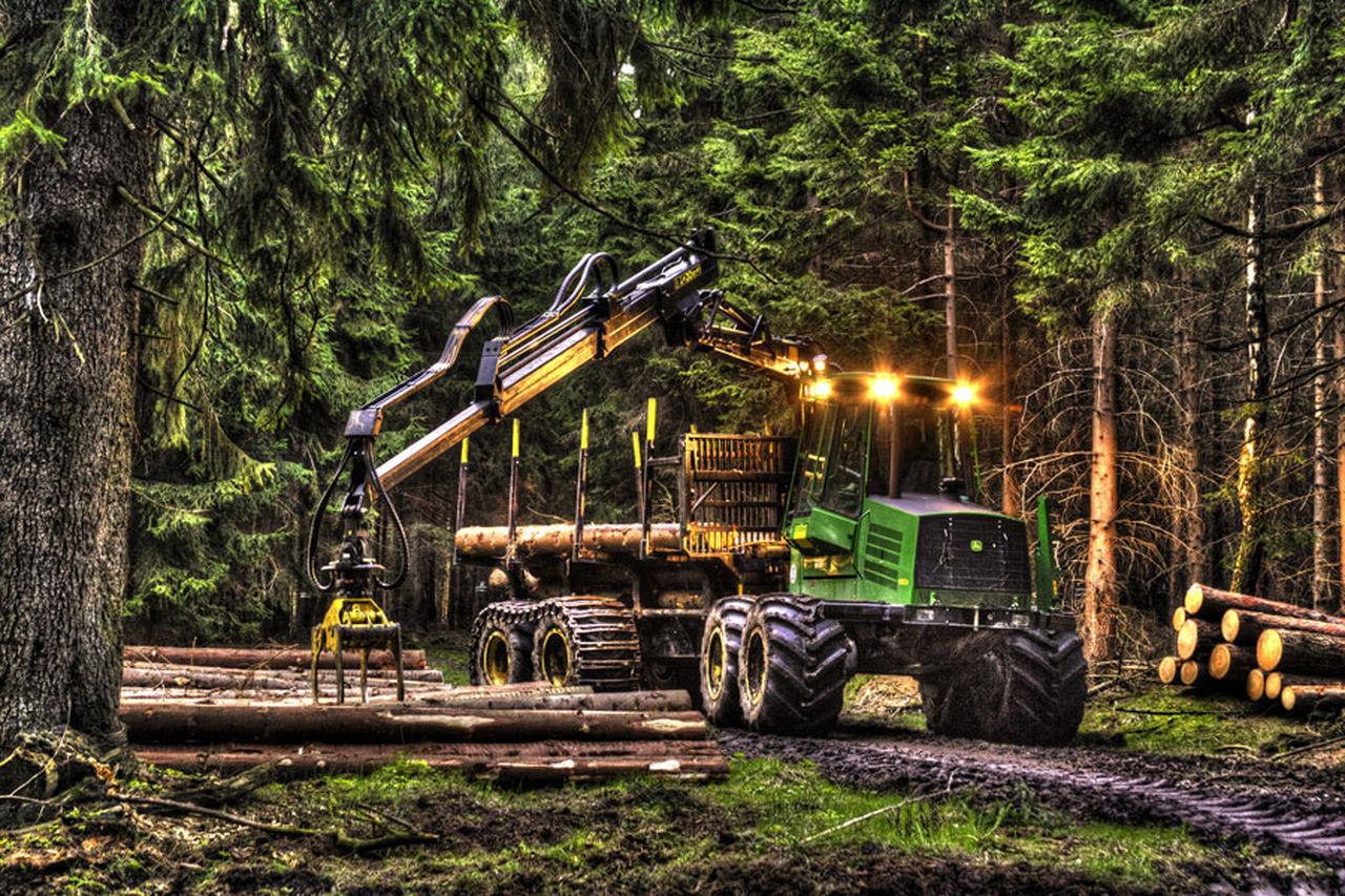 Forest Forstmaschine Holzernte Holzindustrie Rückezug Wald Waldarbeitsfahrzeug