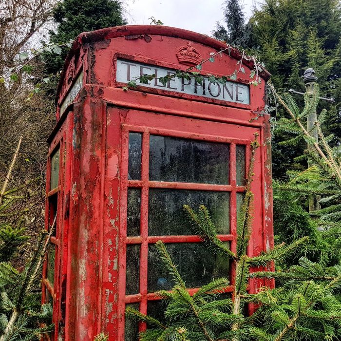 Red Telephone Booth Telephone Outdoors Communication Day Tree Pay Phone No People Connection Architecture EyeEmNewHere EyeEmNewHere
